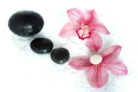 Composition de Spa avec une orchid�e