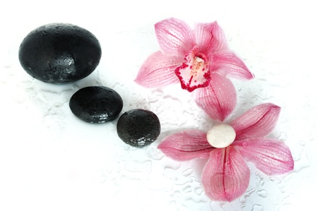 Spa composition with an orchid
