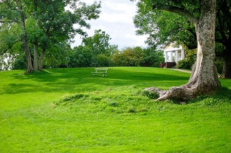 Beautiful green park photo