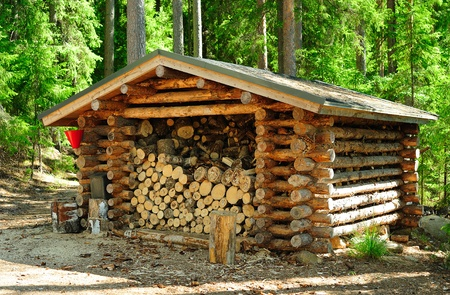 woodpile: Stack of wood for tourists in the large park