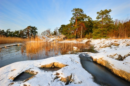 finnish: Northern landscape with forest and rocks