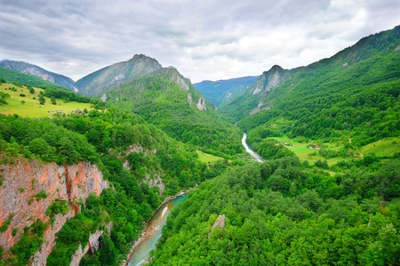 tara: Dramatic view to the canyon of the river Tara in Montenegro (second biggest canyon in the world and the biggest one in Europe)