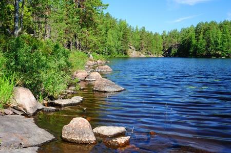 lagos: Hermoso lago del bosque en Finlandia