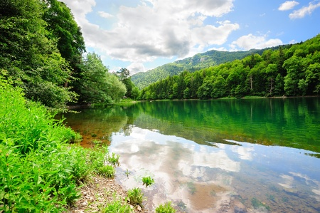 gora: Beautiful Biogradsko lake in the national park Biogradska Gora (Montenegro, Europe)
