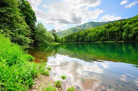 gora: Beautiful Biogradsko lake in the national park Biogradska Gora (Montenegro, Europe)