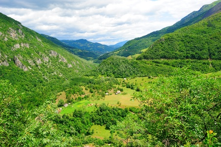 Serene green landscape high in the mountains photo