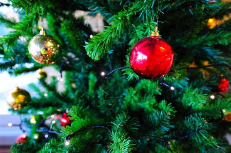 marvellous: Christmas tree with yellow and red ornaments Stock Photo