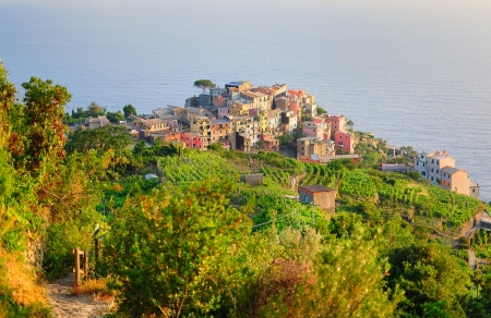 Bright and vivid sunset painting houses in Vernazza village (Cinque Terre, Italy) photo