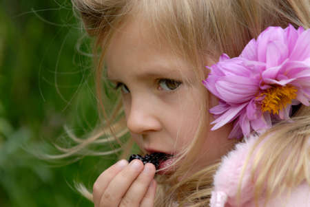 the little girl with a flower in hair eats a blackberry photo