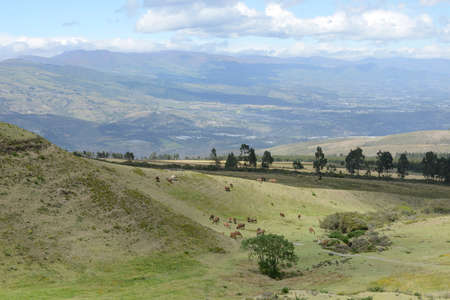 vividly: Latin American picturesque mountain view on volcano.