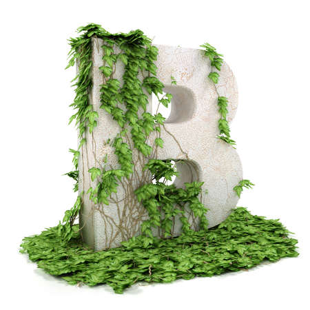 Letter B threads covered with ivy isolated on white background. Stock Photo