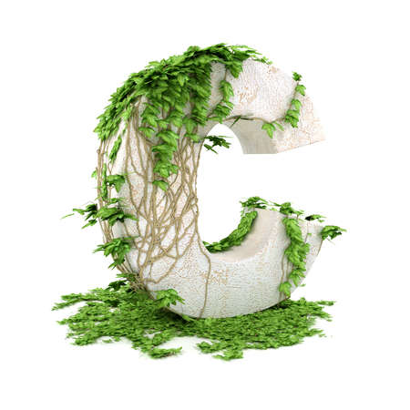 Letter C threads covered with ivy isolated on white background.