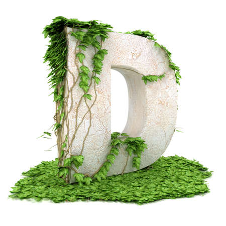 covered: Letter D threads covered with ivy isolated on white background.