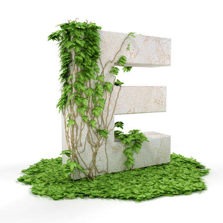 Letter E threads covered with ivy isolated on white background. photo