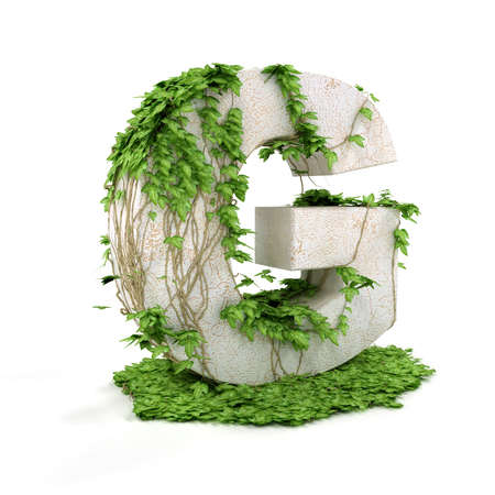 Letter G threads covered with ivy isolated on white background.