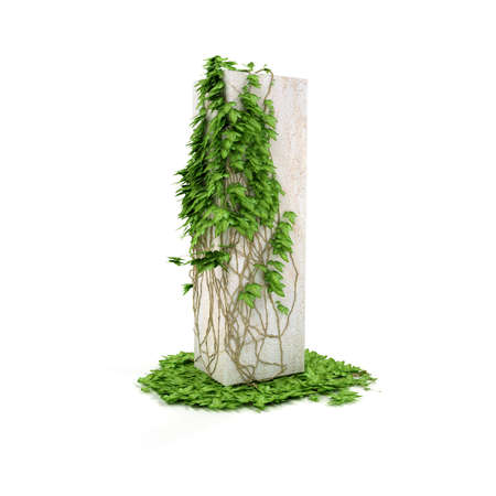 concretion: Letter I threads covered with ivy isolated on white background. Stock Photo