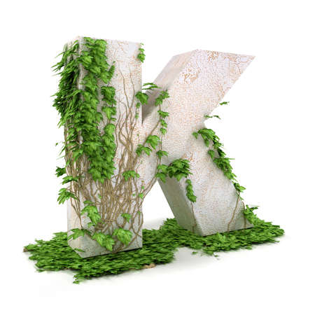 concretion: Letter K threads covered with ivy isolated on white background.