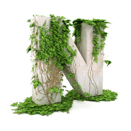 N: Letter N threads covered with ivy isolated on white background. Stock Photo