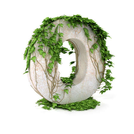 concretion: Letter O threads covered with ivy isolated on white background. Stock Photo