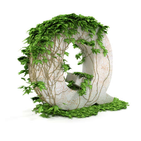 Letter Q threads covered with ivy isolated on white background. Stock Photo