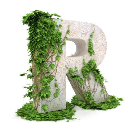 letter r: Letter R threads covered with ivy isolated on white background. Stock Photo