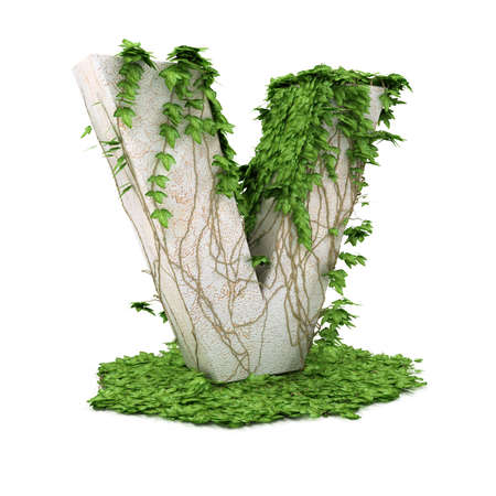 coberto: Letter V threads covered with ivy isolated on white background.