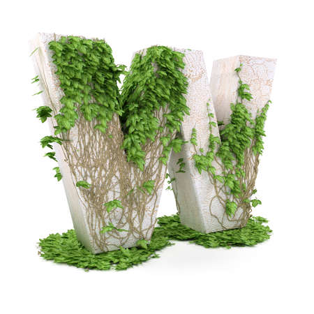 Letter W threads covered with ivy isolated on white background. photo