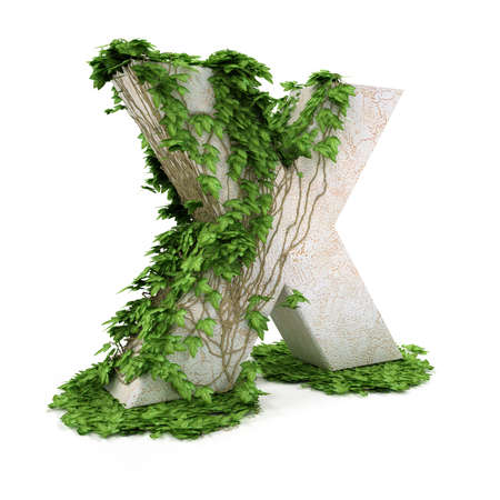 Letter X threads covered with ivy isolated on white background. photo