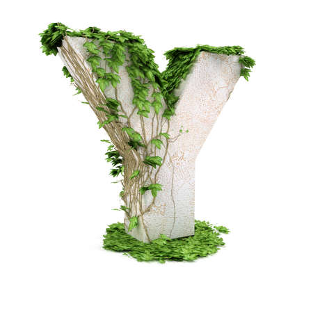 Letter Y threads covered with ivy isolated on white background.