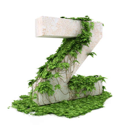Letter Z threads covered with ivy isolated on white background.