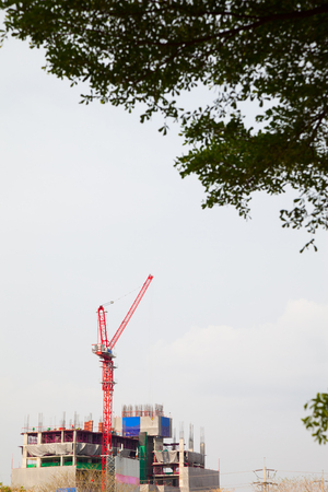 building and Tower crane have a tree foreground Stock Photo