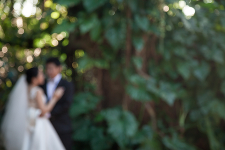 blurred image of love by has the groom bride has been hugged in the forest. Foto de archivo