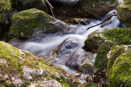 rushing water: Rushing water in the mossy river bed Stock Photo