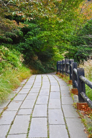Walkway in at Unzen mountain at Obama, Japan Stock Photo - 9913185