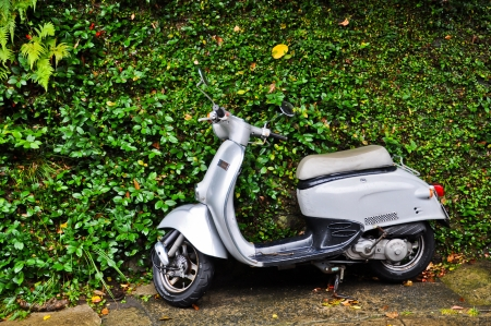 Scooter with Planted wall after rain at Glover