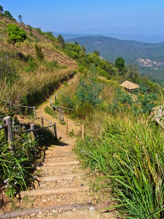 Walkway on Mon Jam hill at Chiang Mai, Thailand Stock Photo - 12830468