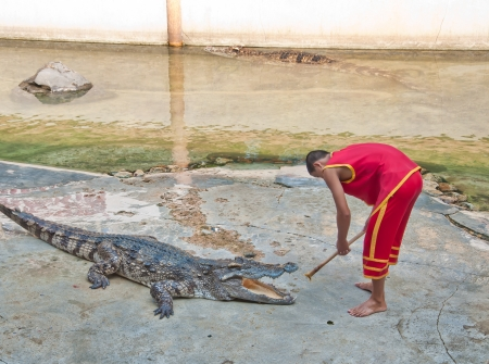 Crocodile show at Samutprakarn Crocodile farm in Thailand photo