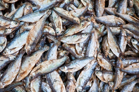Dry fish in local market at Konpapeng Waterfall Stock Photo - 14216559