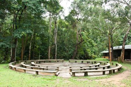 Cercle si�ge pour le camping dans la for�t Banque d'images