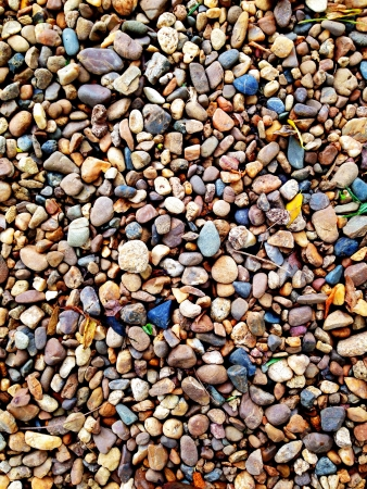 Many small rocks and leaves as background Stock Photo
