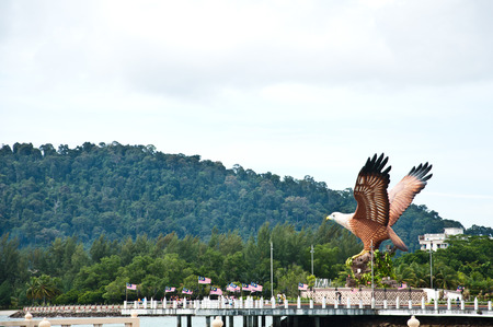 The status of eagle in Langkawi in Malaysia  photo