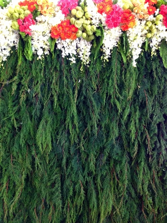 backdrop: Backdrop makes from flowers and leaves