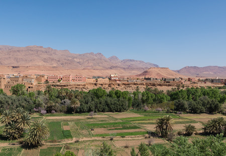 foothill: The agriculture at foothill during end of winter and beginning of spring on March 2014 in Tinghir city which located on the way from Gorges du Dades to Todra Gorge in Morocco Stock Photo