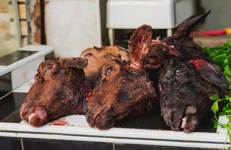 goat head: The goat head for sell in the fresh market in medina of Fes, Morocco