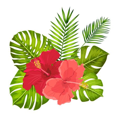 Lovely vector tropical bouquet. Hibiscus and monstera leaves. Exotic flowers and Palm leaves.
