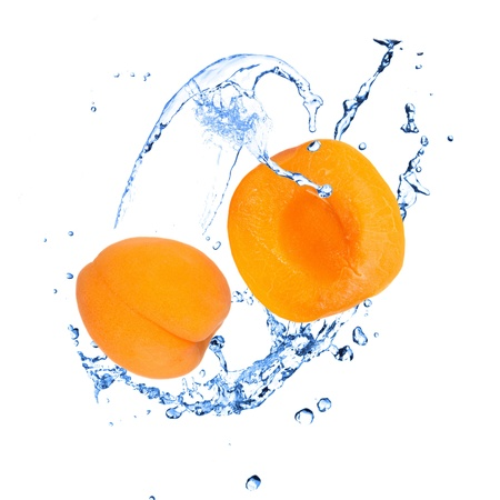 Apricot with water splash over white  photo
