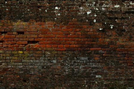 stockade: Brick wall texture