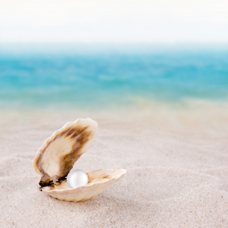 Sea shell with pearl on the beach photo
