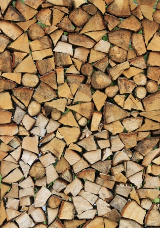 Cross section of the timber for the background. Stock Photo - 14729843