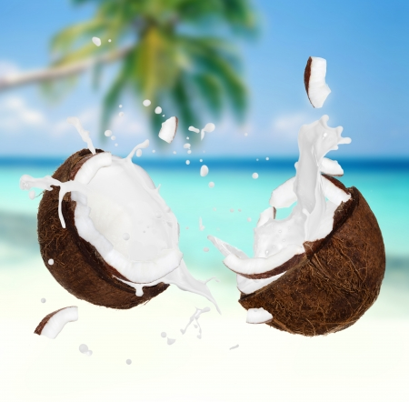 copra: Coconut with milk splash on the beach  Stock Photo